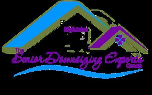 SDE Logo Transparent.png