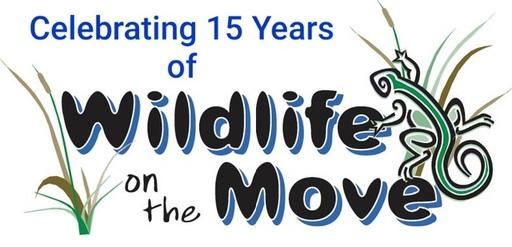 15 Years of WOTM Logo.jpg